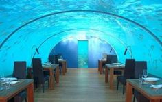 jules undersea lodge in key largo florida | World Tourism: World's Best Remote Hotels for the Newlyweds