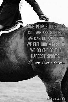 Equestrian quotes