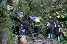 to conquer Fansipan, visitors have to overcome many high mountains àn the road zigzings tricky