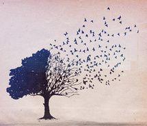 Dear God, make me a bird so I can fly far far away.