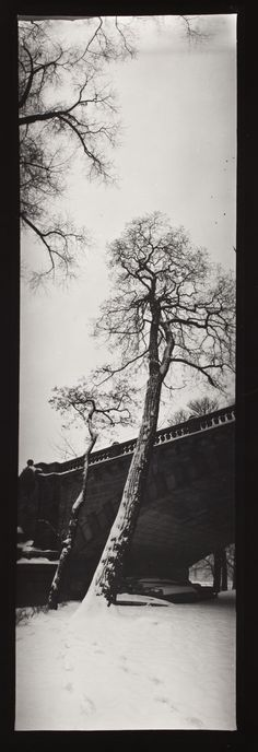 Snow, Bridge, Trees (Vertical Panorama), Josef Sudek