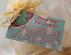 Little BAG of BITS: Christmas Survival Kit - male, female Christmas stocking filler, teachers novelty present