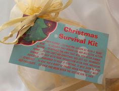 Little BAG of BITS: Christmas Survival Kit - male, female Christmas stocking filler, teachers novelty present