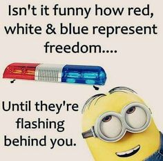 Cute Friday Minions Funny captions (08:10:50 PM, Friday 27, November 2015 PST) – 12 pics