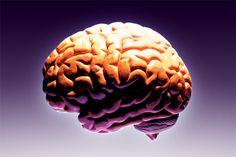 Brain Health May Be Key to Avoiding the Most Dreaded Disease