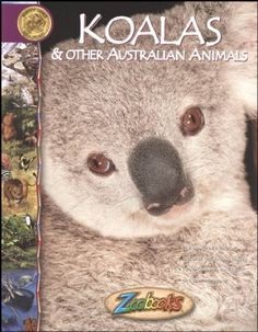 Koalas & Other Australian Animals Zoobook at theBIGzoo.com, a family-owned gift shop with 12,000+ animal-themed items.