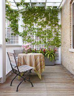 Lovely Rooftop Garden in Chicago