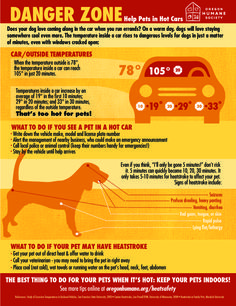Tips for keeping your pets safe in hot weather and sun. What to do if a pet is left in a hot car; signs of heatstroke; more from the Oregon Humane Society.