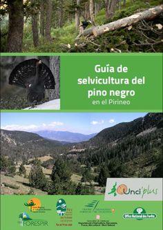 Guía de selvicultura del pino negro en el Pirineo / [coordinación, Francesc Cano... (et al.) ; redacción, Lluís Coll... (et al.)]