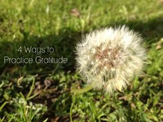 4 Simple Ways to Practice Gratitude #inspirational #words #gratitude