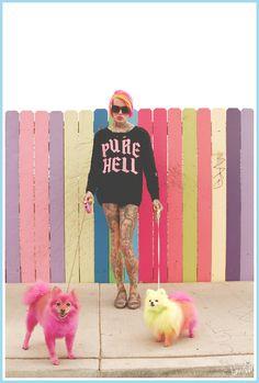 """Family Portrait"" 2012. Jeffree Star, Diva & Diamond. Photo by Dany Todd. #pets #neon #color"