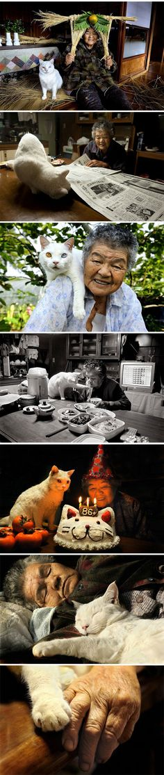Japanese woman and her kitty best friend  - funny pictures #funnypictures