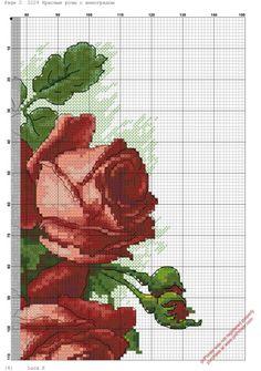 Gallery.ru / Фото #7 - *****flores***** - celita / czerwone róże i winogrona 3/7