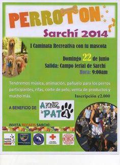 PERROTON SARCHIhttp://www.desktopcostarica.com/eventos/2014/perroton-sarchi