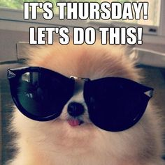 It's Thursday! Let's do this!
