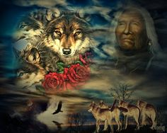 native Native American Cherokee, Native American Quotes, Native American History, Native American Indians, Native Indian, Native Art, Native American Spirituality, Native Girls, Aboriginal Culture