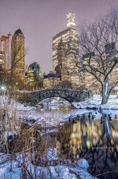 Gapstow Bridge Central Park New York City NYC New York City Travel Honeymoon Backpack Backpacking Vacation Central Park, New York Central, City Photography, Landscape Photography, New York Christmas, Gold Christmas, Photo Images, New York City Travel, City Aesthetic