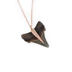 Shark-Tooth Jewelry For Fashion Girls | The Zoe Report