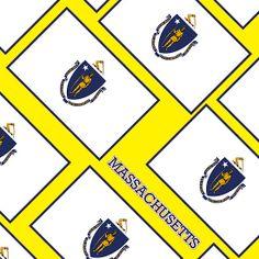 Smartphone Case - State Flag of Massachusetts - Diagonal IV