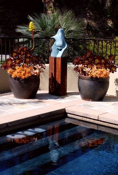 Garden Features Gallery | Plant Goddess Landscaping