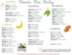 Solid Food Chart for Babies Aged 4 months through 12 months - Find age appropriate foods for all baby food stages on this simple to read baby food chart - this is a great guide for when to introduce what. I'm probably a little overboard, but it's nice to know what things I shouldn't have to worry about now. by esperanza