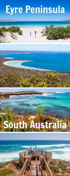 Highlights of a road trip along the Eyre Peninsula in South Australia. Click inside for tips and more photos!