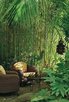 Change Your Garden With Tropical Landscape Design You'll Love 23 - Tropischer Garten Patio Tropical, Tropical Garden Design, Tropical Landscaping, Modern Landscaping, Backyard Landscaping, Landscaping Ideas, Backyard Landscape Design, Small Tropical Gardens, Tropical Homes