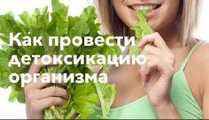 Детоксикация, как лечение целлюлита. https://kochetkova2.ru/kozha/detoksikatsiya-kak-lechenie-tsellyulita