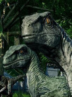 Delta & Blue Jurassic Park Raptor, Jurassic Park Film, Lego Jurassic, Blue Jurassic World, Jurassic World Fallen Kingdom, Dinosaur Images, Dinosaur Art, Jurassic World Wallpaper, Raptor Dinosaur
