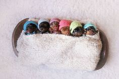 This Adorable Newborn Puppy Photo Shoot Will Make Your Heart Melt