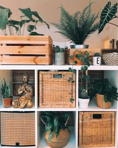 KALLAX oak effect, Shelving unit, cm. Choose whether you want to hang it on the wall or stand it on the floor. Room Ideas Bedroom, Bedroom Decor, Men Bedroom, Deco Zen, Room With Plants, Boho Room, Aesthetic Room Decor, Aesthetic Indie, Dream Rooms