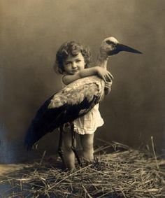 My mom wants me to paint a stork.  Why a stork I do not know!  but I found... THIS!  wow!