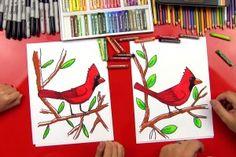 cardinal-feature