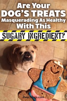 You need to watch for this dangerous ingredient in your dog's food...