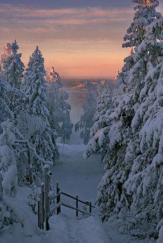 The Golden Hour by Vesa Laukka, via Flickr; Vuokatti, Oulu Province, Finland | latitudethirtyfour.com