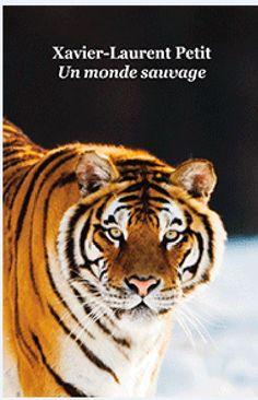 La Sibérie, la taïga et Miss Infinity, magnifique femelle tigre qui défend son territoire et ses petits face aux braconniers. Heureusement, Alissa garde forestière, refuse d'abdiquer et coûte que coûte se bat pour défendre ses animaux et leur liberté.