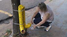 Wancleia coloca água em bebedouro criado por ela em Rio Preto  (Foto: Reprodução/TV TEM)
