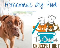 Homemade Dog and Cat Food Recipe