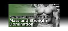 Ultimate Training Guide To Mass And Strength Domination!
