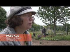 SPOT Potagers - RCR ASBL - YouTube