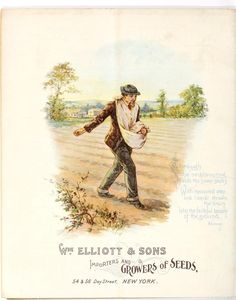 Wm. Elliott & Sons - Seed Catalogue - 1896 - Vintage scattering seed