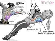 Ring or trx row hit bi tri side back/lats Fitness Workouts, Fitness Tips, Fitness Motivation, Trx Training, Weight Training, Workout Guide, Workout Videos, Trx Workout, Back Exercises