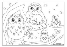 Activity Village---free prinable page---Owl colouring page 3