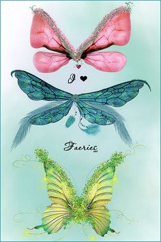 Fairy, Butterfly & dragonfly