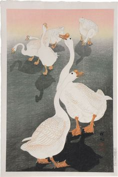 A woodblock print by Ohara Koson, Geese, at Scholten Japanese Art. Art And Illustration, Free Illustrations, Art Canard, Ohara Koson, Japanese Painting, Japanese Prints, Japan Art, Swans, Woodblock Print
