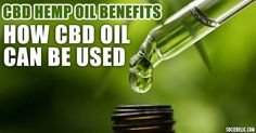 How CBD Oil can be used: Within the swiftly growing cannabis oil industry is a new category of products seeing its own equally rapid rise in popularity: cannabidiol hemp oil, or CBD hemp oil. Medical Cannabis, Cannabis Oil, Cdb Oil, Oil Industry, Cbd Hemp Oil, Cannabis Growing, Oil Benefits, Health Benefits, Health Tips