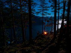 Hammocks above Sognefjorden Hammock Tent, Hammocks, Camping Gear, Outdoor, Inspiration, Outdoors, Biblical Inspiration, Hammock Chair, Camping Products