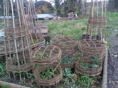 Learn to weave Willow Pea Frames and Hurdles with course at Humble by Nature