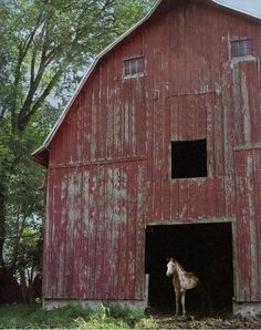 Old Red Barn...