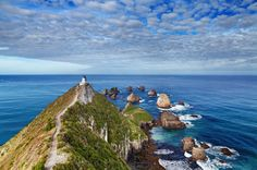 Nugget Point en Nouvelle-Zélande
